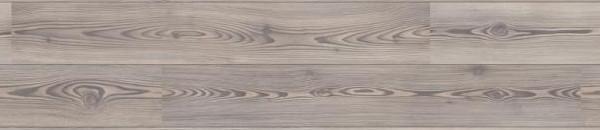 Laminátová plovoucí podlaha - Borovice stříbrná - vzhled